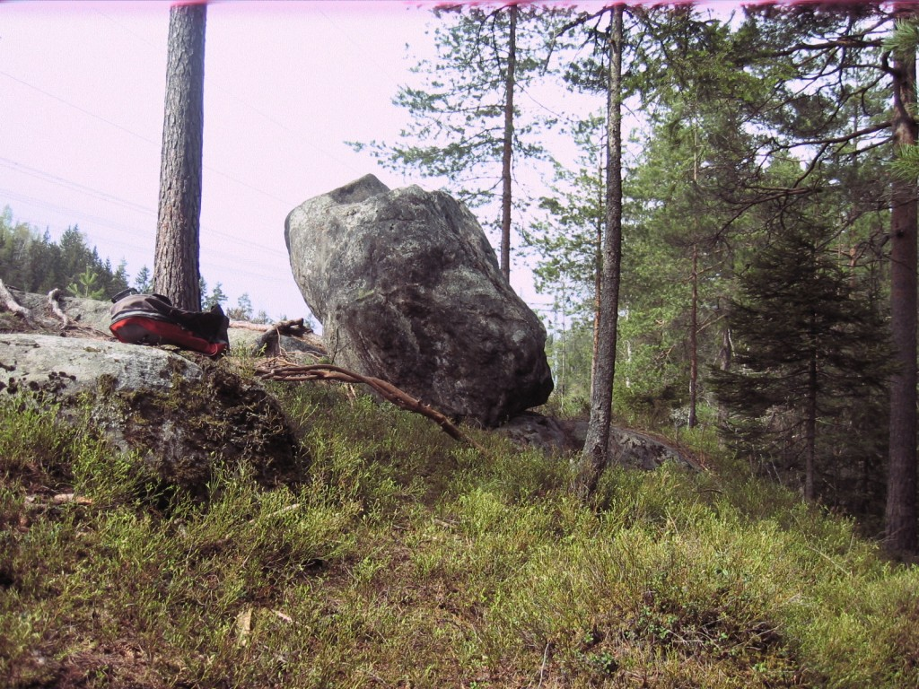 stein-i-skog