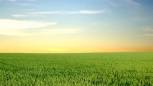 Jord og himmel møtes